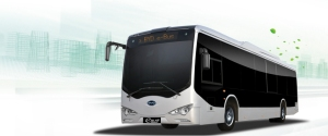 byd pure ebus-12